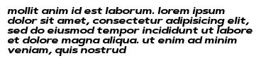mollit anim id est laborum. lorem ipsum dolor sit amet, consectetur adipisicing elit, sed do eiusmod tempor incididunt ut labore et dolore magna aliqua. ut enim ad minim veniam, quis nostrud