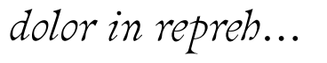 dolor in reprehenderit in voluptate velit esse cillum dolore eu fugiat nulla pariatur. excepteur sint occaecat cupidatat non proident, sunt in culpa qui officia deserunt mollit anim id est laborum.