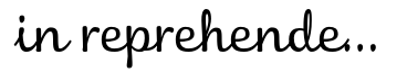 in reprehenderit in voluptate velit esse cillum dolore eu fugiat nulla pariatur. excepteur sint occaecat cupidatat non proident, sunt in culpa qui officia deserunt mollit anim id est laborum. lorem