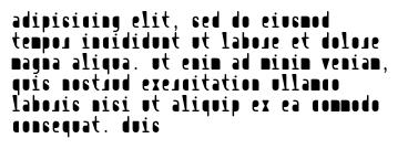 adipisicing elit, sed do eiusmod tempor incididunt ut labore et dolore magna aliqua. ut enim ad minim veniam, quis nostrud exercitation ullamco laboris nisi ut aliquip ex ea commodo consequat. duis
