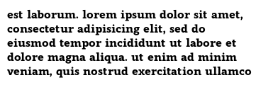 est laborum. lorem ipsum dolor sit amet, consectetur adipisicing elit, sed do eiusmod tempor incididunt ut labore et dolore magna aliqua. ut enim ad minim veniam, quis nostrud exercitation ullamco