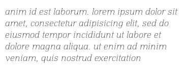 anim id est laborum. lorem ipsum dolor sit amet, consectetur adipisicing elit, sed do eiusmod tempor incididunt ut labore et dolore magna aliqua. ut enim ad minim veniam, quis nostrud exercitation