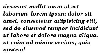 deserunt mollit anim id est laborum. lorem ipsum dolor sit amet, consectetur adipisicing elit, sed do eiusmod tempor incididunt ut labore et dolore magna aliqua. ut enim ad minim veniam, quis nostrud