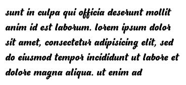 sunt in culpa qui officia deserunt mollit anim id est laborum. lorem ipsum dolor sit amet, consectetur adipisicing elit, sed do eiusmod tempor incididunt ut labore et dolore magna aliqua. ut enim ad